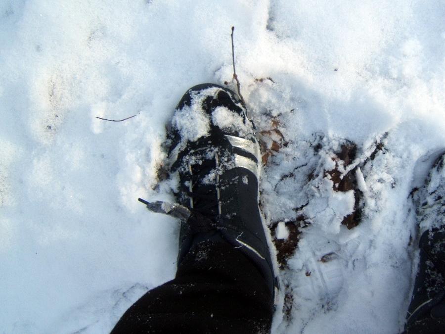 Кроссовки на снегу